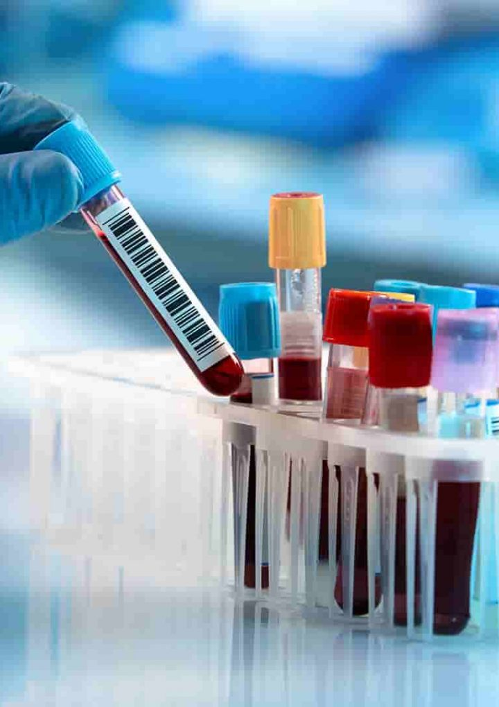 The Role of IT in Improving Demand Management and Blood Test Interpretation